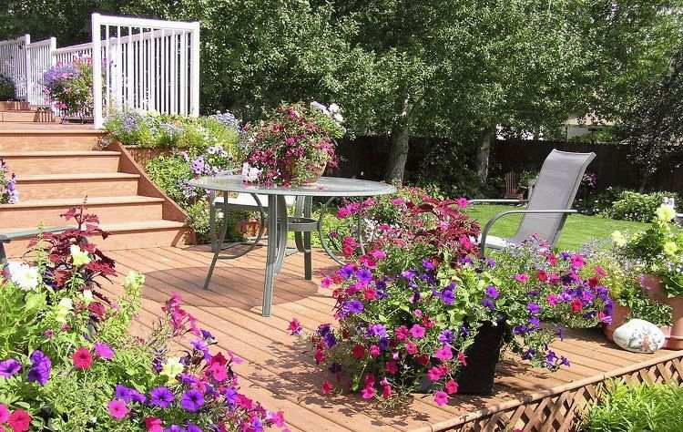 DIY Ideas to Create a Floral Paradise3