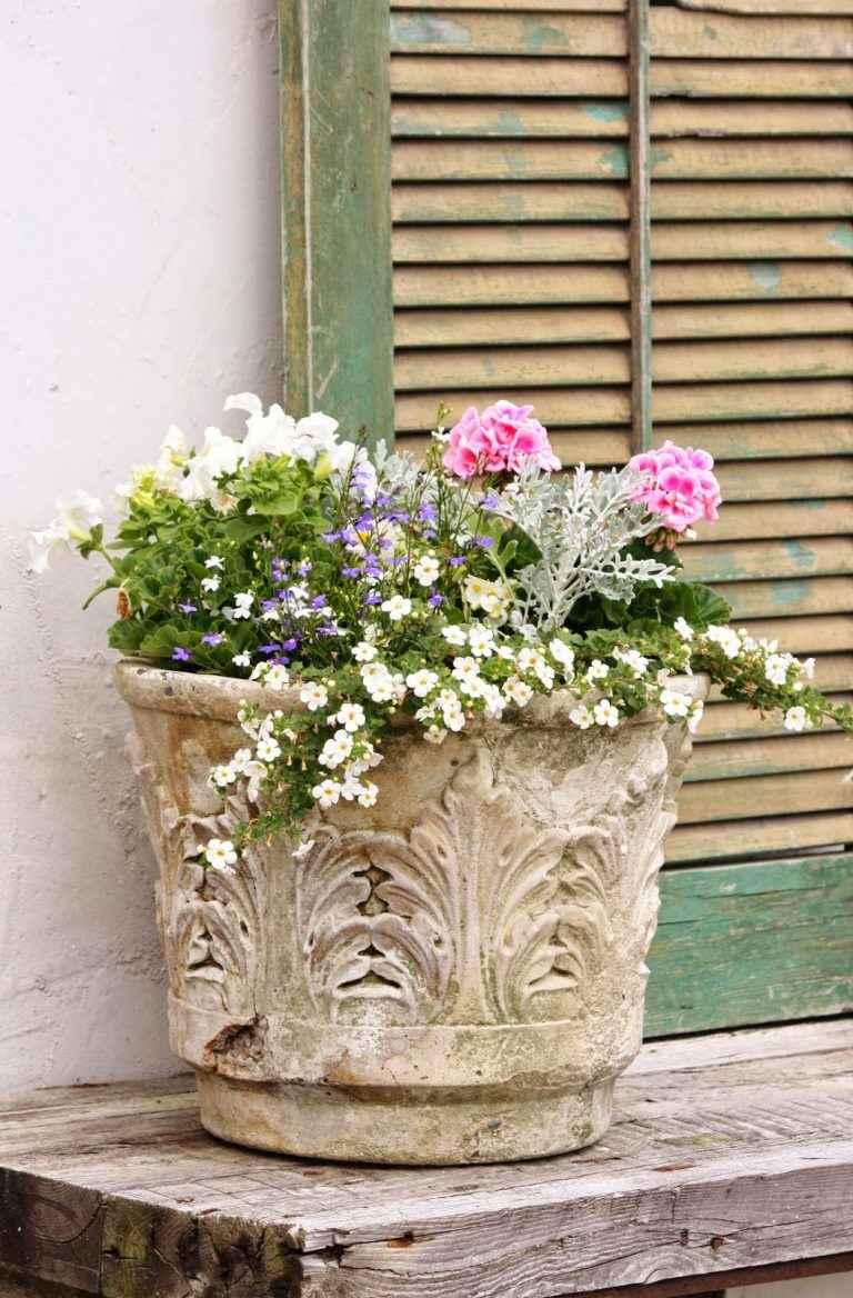 DIY Ideas to Create a Floral Paradise9