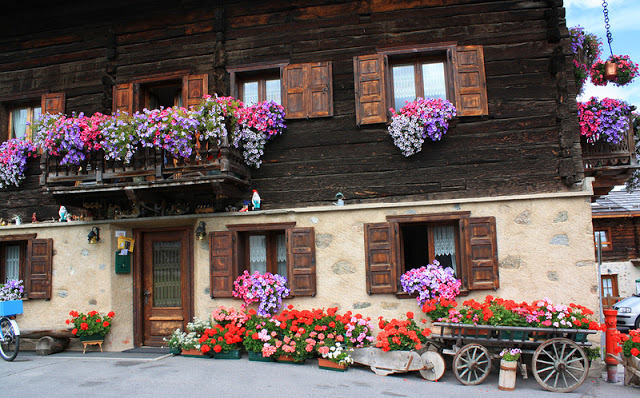 Flower balconies and windows1