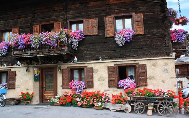 Flower balconies and windows1