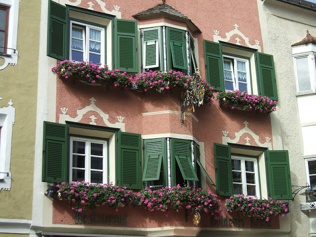 Flower balconies and windows11