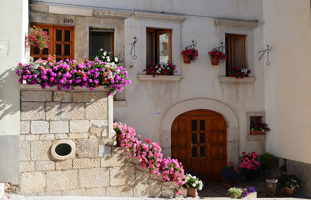 Flower balconies and windows18