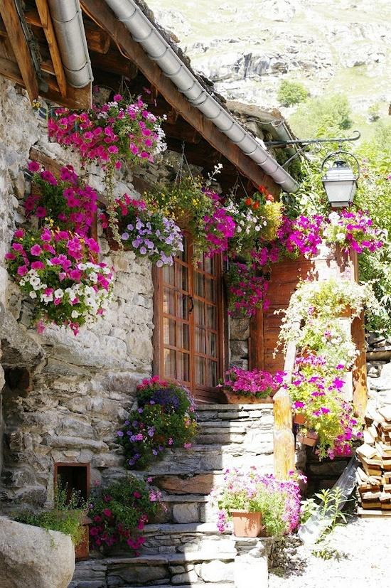 Flower balconies and windows2