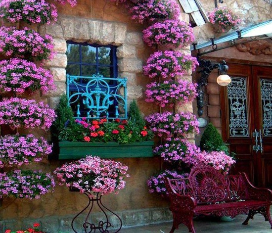 Flower balconies and windows32