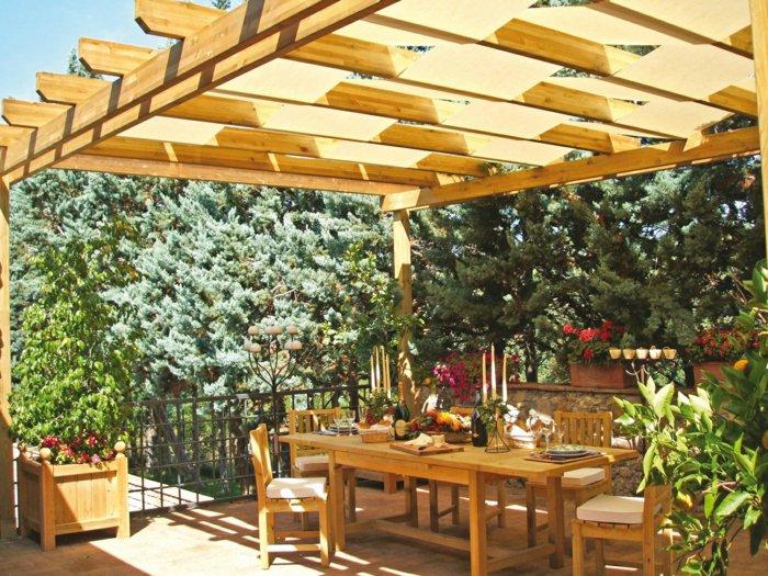 Garden with pergola23