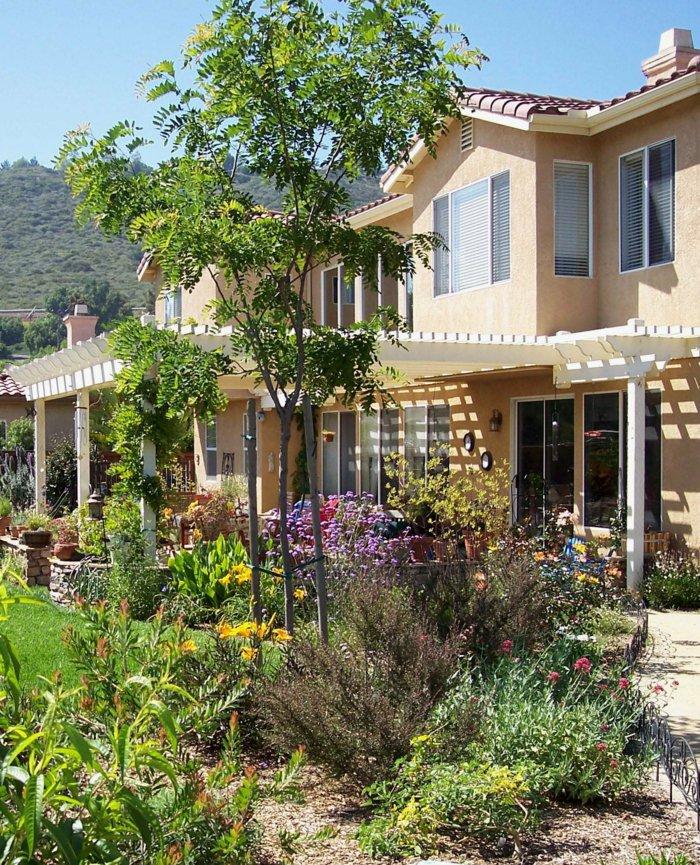 Garden with pergola36