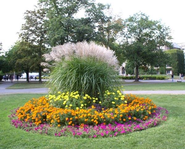flower beds ideas (13)