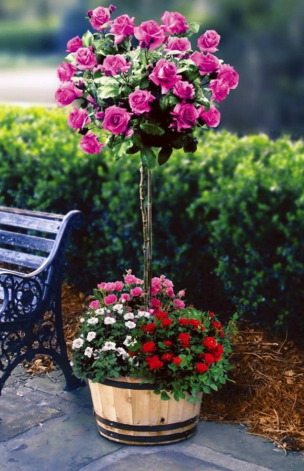flower beds ideas (18)