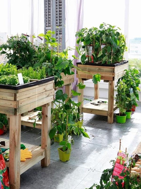 ideas for gardens13