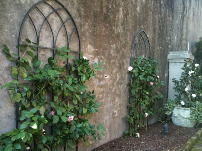 trellis in the garden2