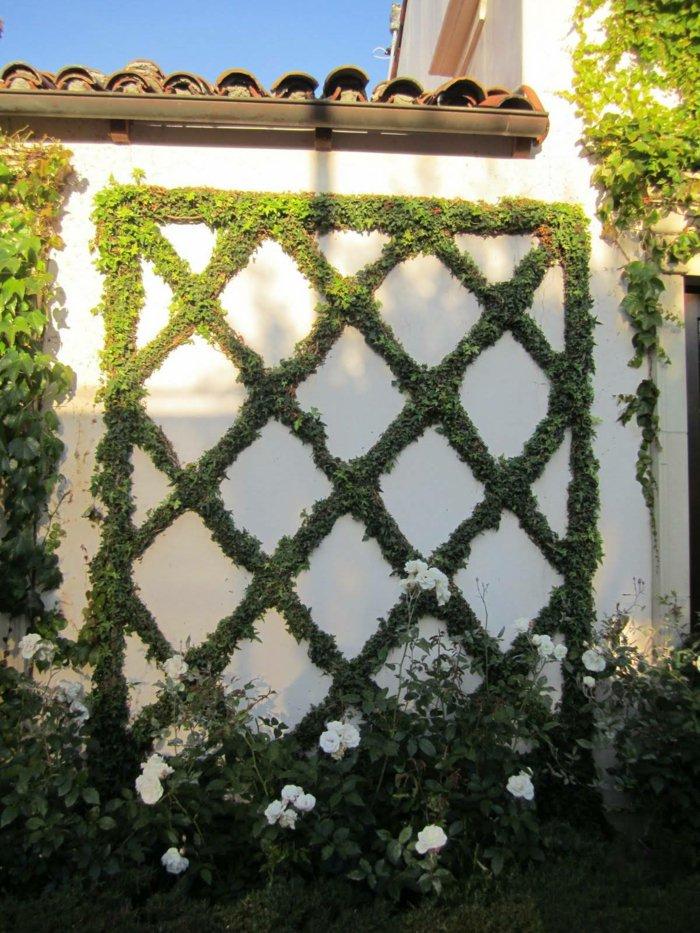 trellis in the garden8