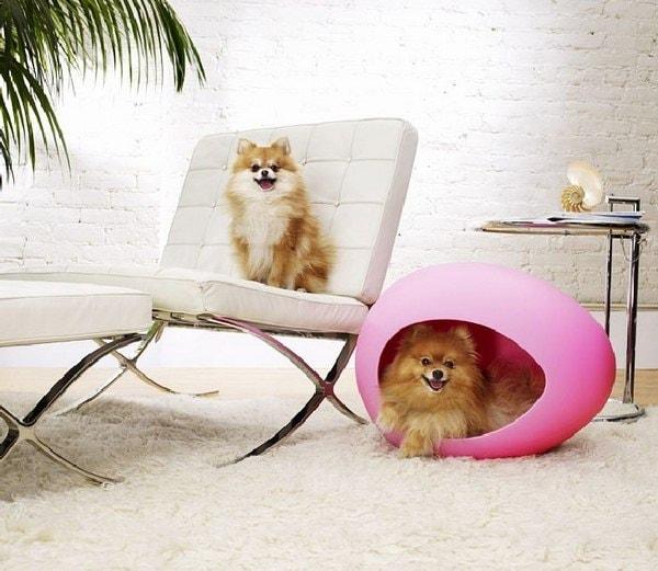 pet beds ideas1