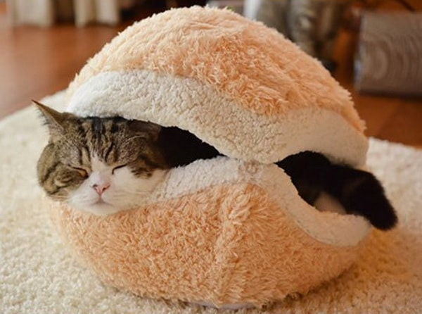 pet beds ideas10