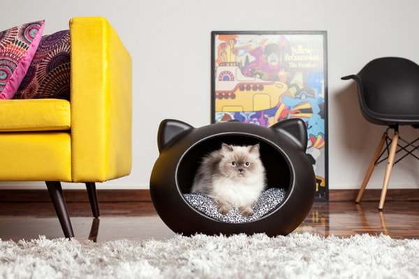 pet beds ideas12