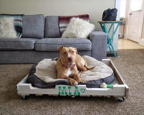 pet beds ideas5