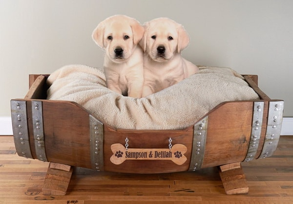 pet beds ideas7