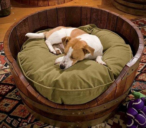 pet beds ideas8