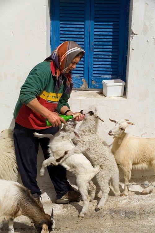 Nostalgic life in the Greek village4