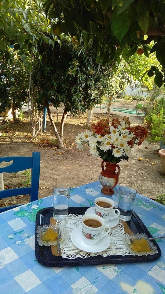 Nostalgic life in the Greek village7