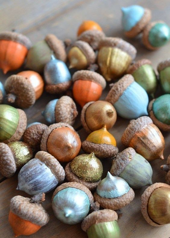 diy from acorns (12)