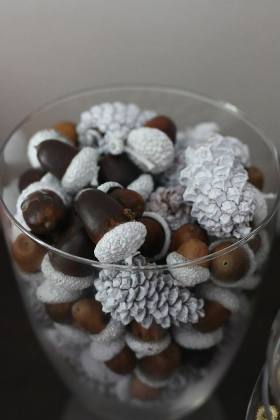 diy from acorns (2)