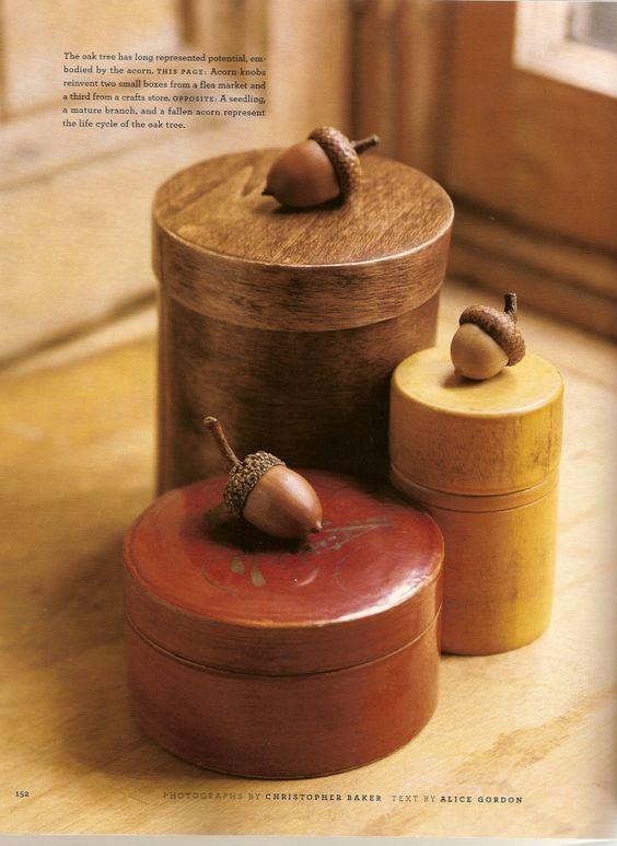 diy from acorns14