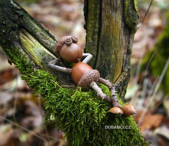 diy from acorns8