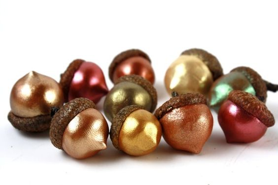 diy from acorns9