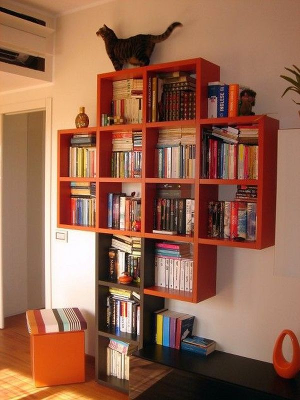 practical and unique ideas to organize books14