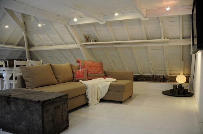 Attics deco and inspiration60