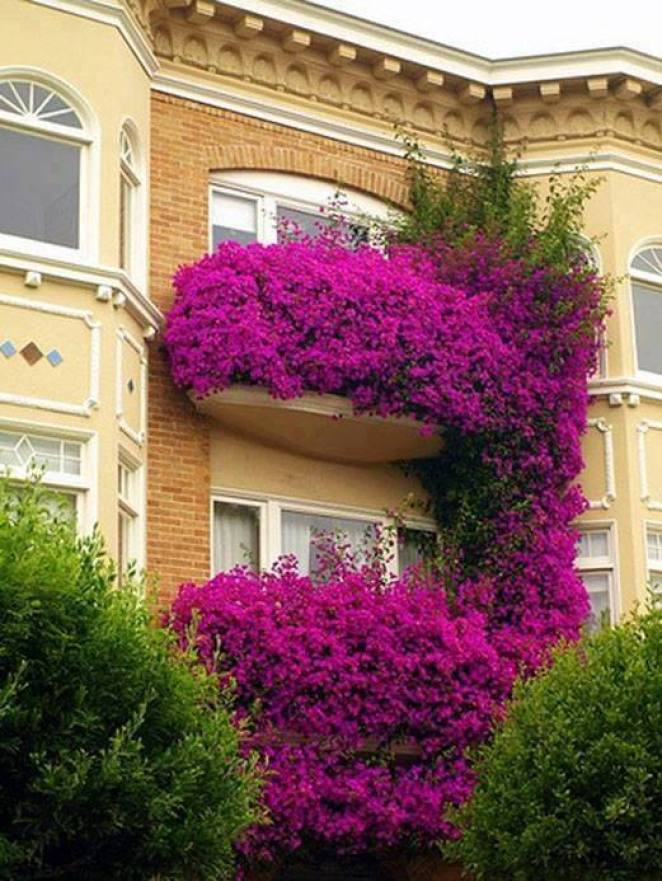 mydesiredhome - blooming balconies ideas11