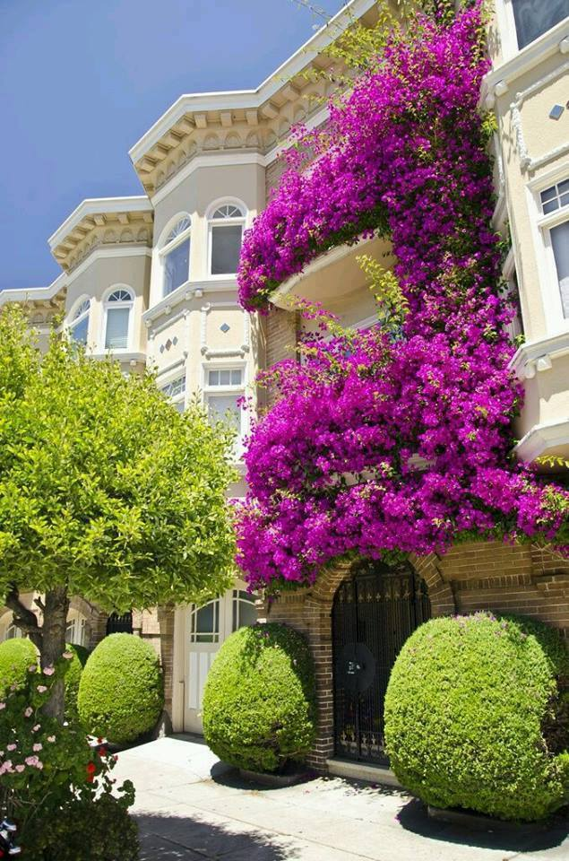 mydesiredhome - blooming balconies ideas24
