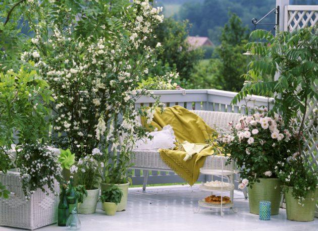 Small balcony13