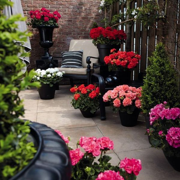 Fantastic Garden Arrangement Ideas With Flowers For The
