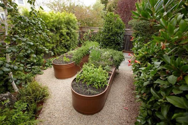 gardening tips and design ideas18