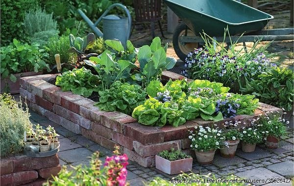 gardening tips and design ideas3