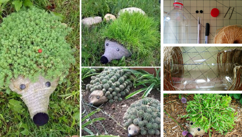 DIY Hedgehog planters: Incredible decor for the garden from a plastic bottle