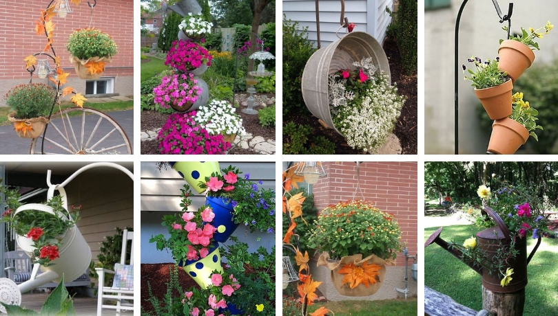 Highlight garden with these DIY ideas of colorful pot arrangements