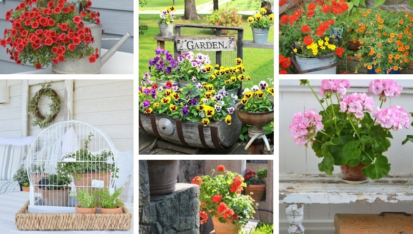 Gardens ideas with a vintage look, very beautiful and welcoming